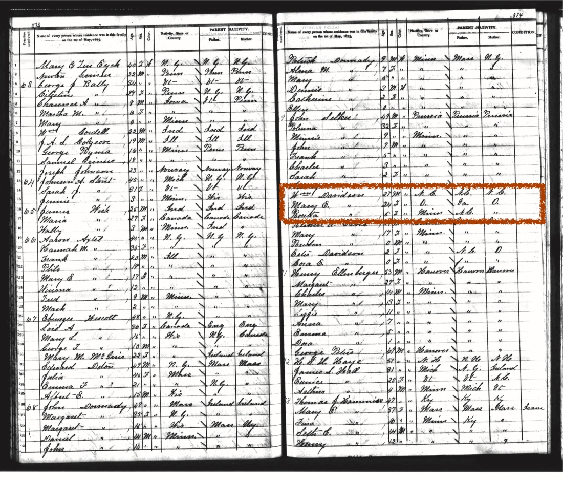 Census record of William and Mary E. (Ousley) Davidson