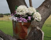 Flowers_rustybucket