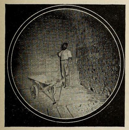 Brickmakers in the Thomas Moulding Brickyard. The Miller Brickyard, located nearby, would have looked similar.